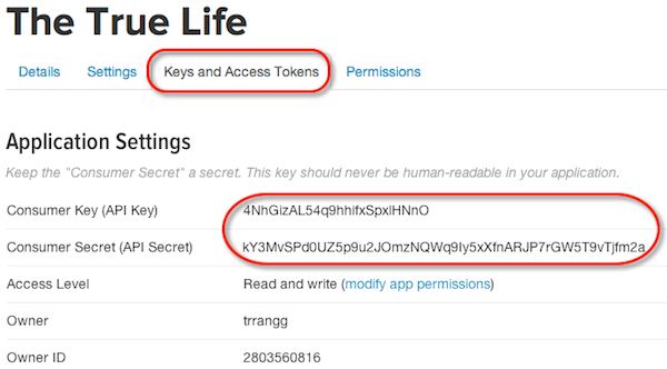 how to get twitter api consumer key